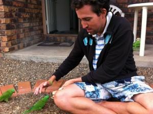 Le wwoofing en Australie - Blog Australie , L'Océanie pour les zéros