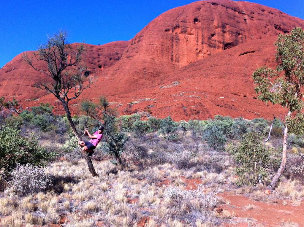 Monts Olgas Australie (2)
