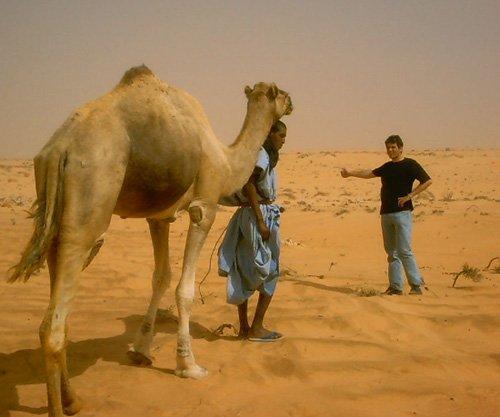 phoca_thumb_l_06. traverse sahara