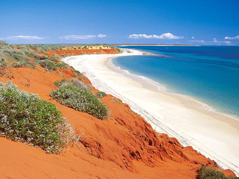Shark Bay Australie