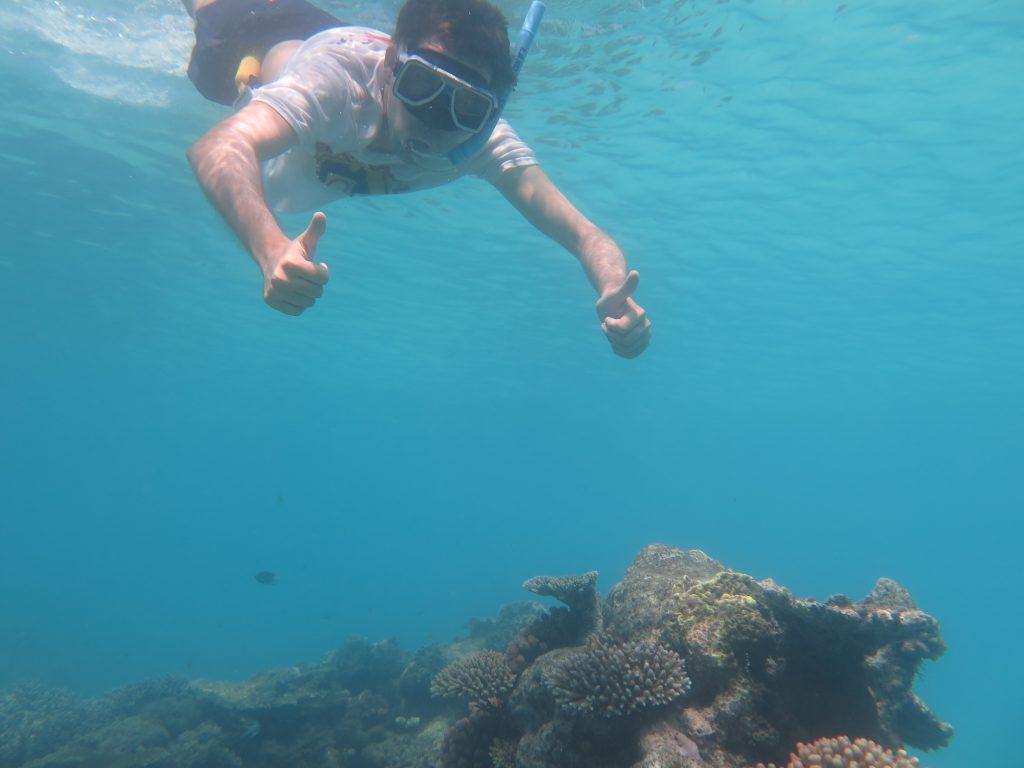 Grande Barrière de Corail Australie