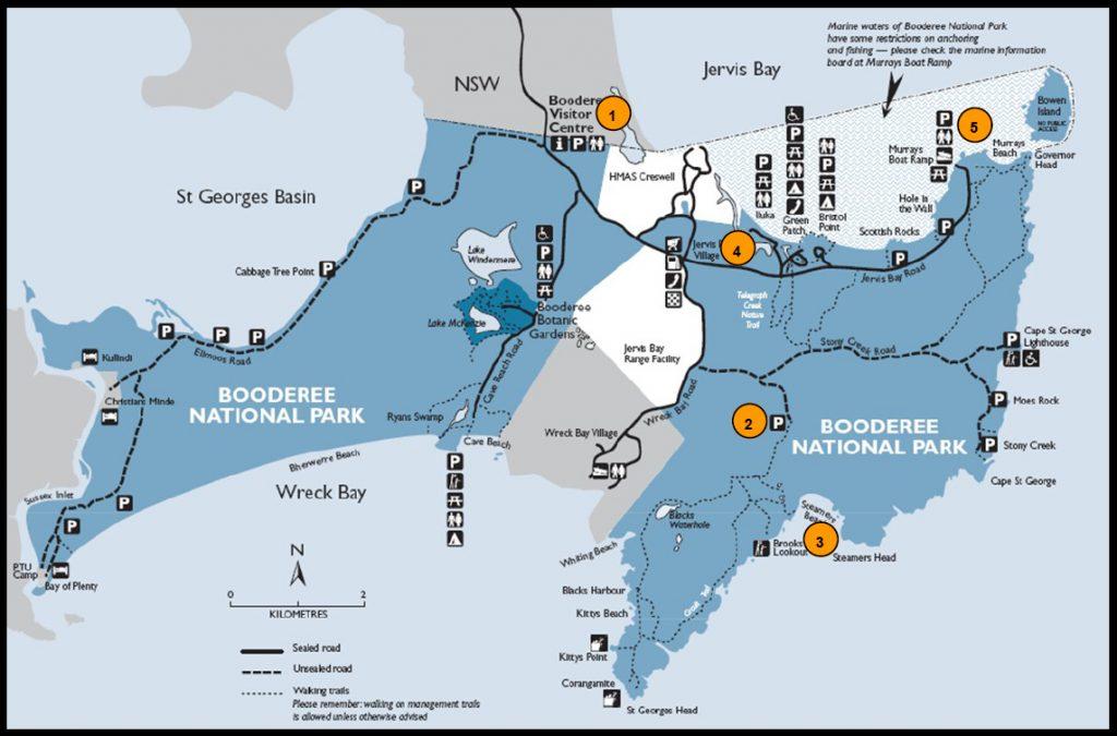 Plan pour se rendre de Paynesville à l'île aux koalas Raymond Island en ferry