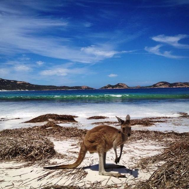lucky-bay-australie