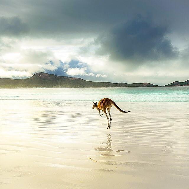 Cape Le Grand National Park Australie
