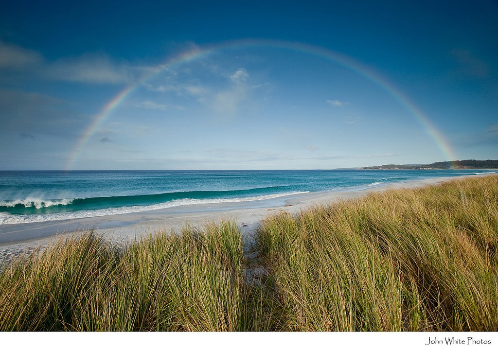 Rainbow over beach and dune grass. Bay of Fires. Tasmania. Australia.
