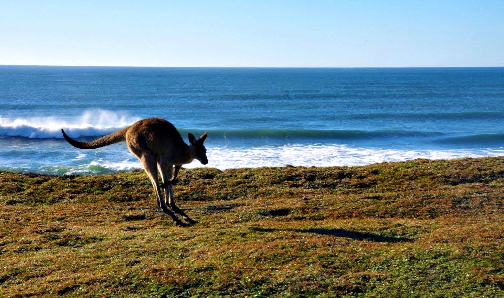 Australie Road trip côte est