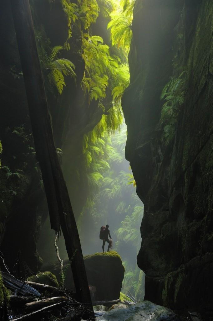 Claustral Canyon dans les Blue Mountains