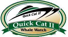 logo-quickcat-header