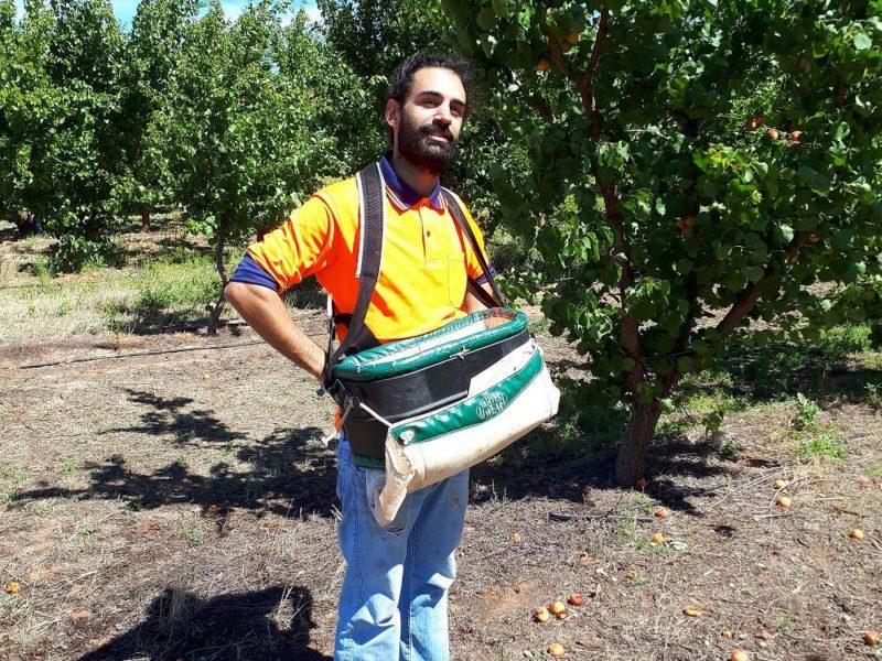 Travail en ferme AUSTRALIE